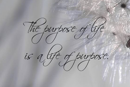 life quotes the purpose of life