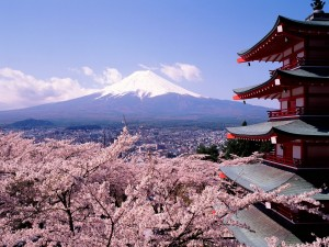 a beautiful landscape with cherry blossom, Japanese tradition