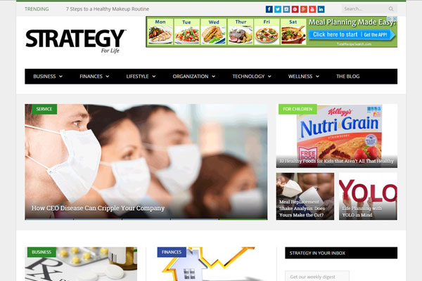 Strategy For Life Business Website