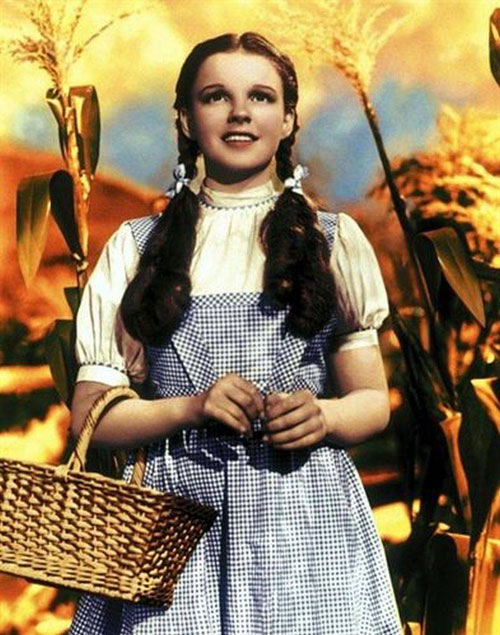 Dorothy gingham dress The Wizard of Oz