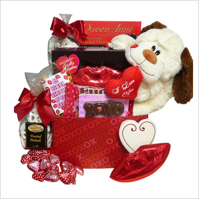 Plush Puppy Care Package Gift Box
