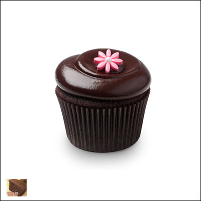 Tastykake Chocolate Cup Cakes Family Packs
