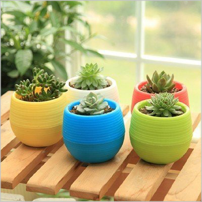 4.5 inches round colorful flower pots