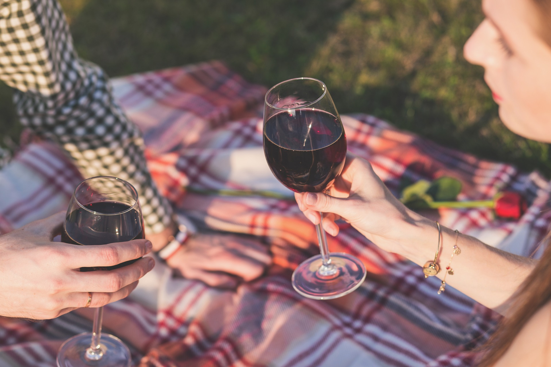 Couple holding a glass of wine on a picnic